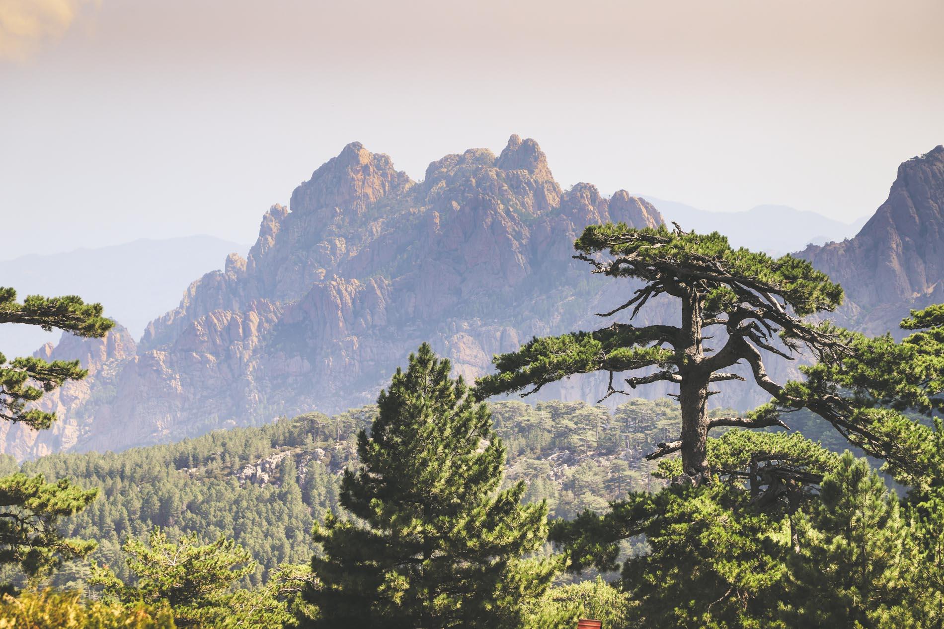 Les Aiguilles de Bavella Corse du Sud