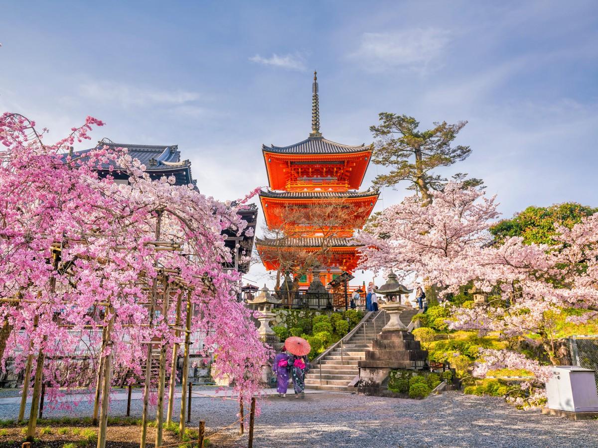 OuPartirEn2020-Mai-Japon