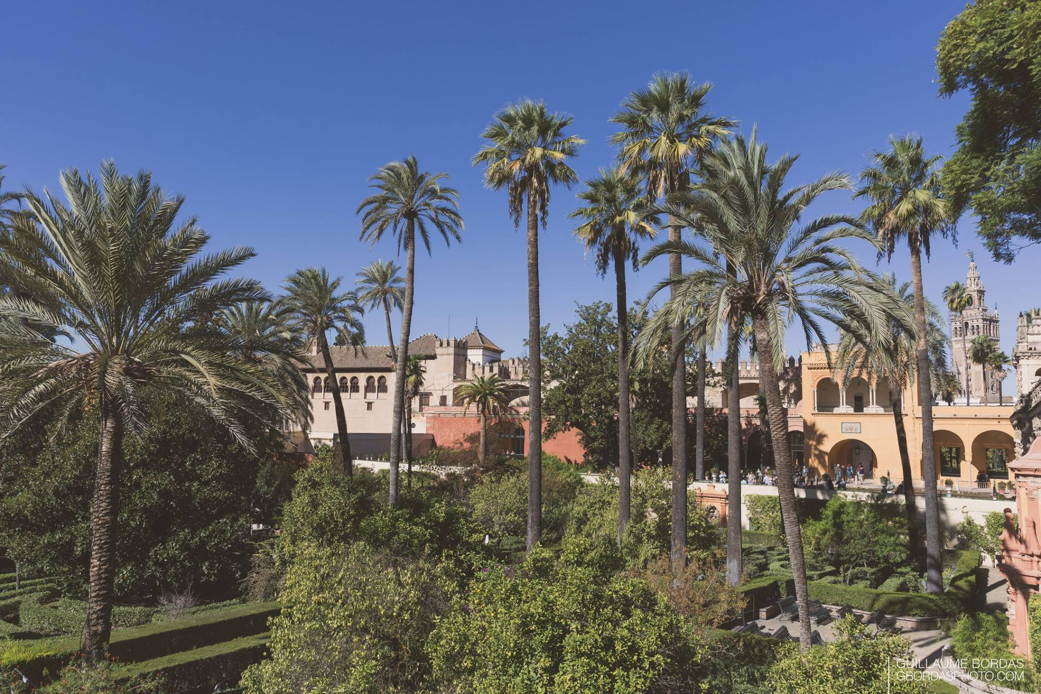 Jardins Real Alcazar