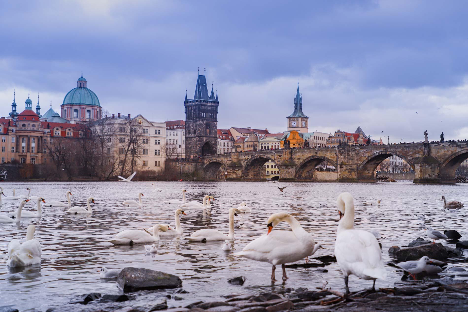 Berge-Pont-Charles-Prague