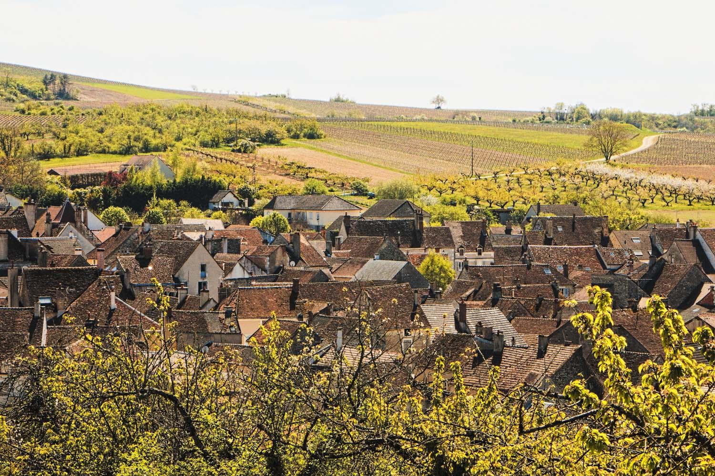Bourgogne-vignobles