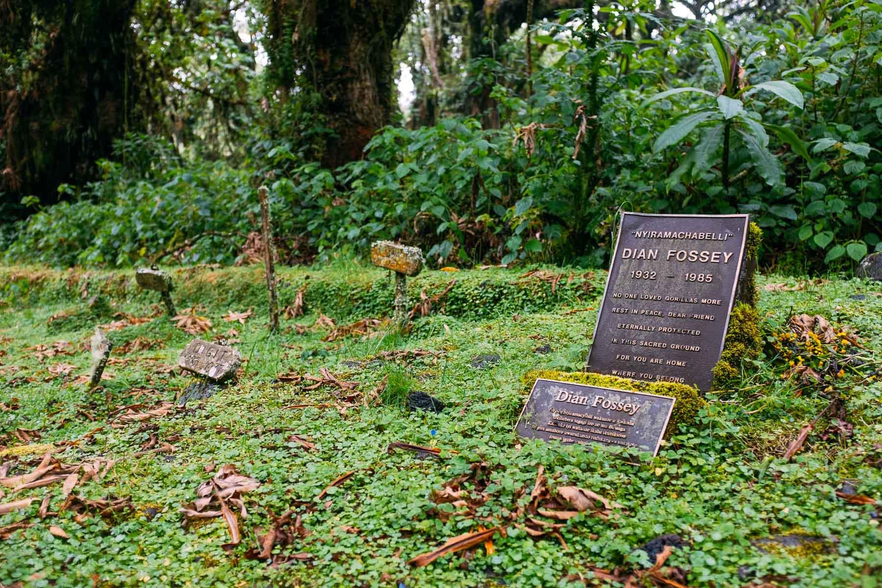 Dian-Fossey-Rwanda-Virunga-Mountains