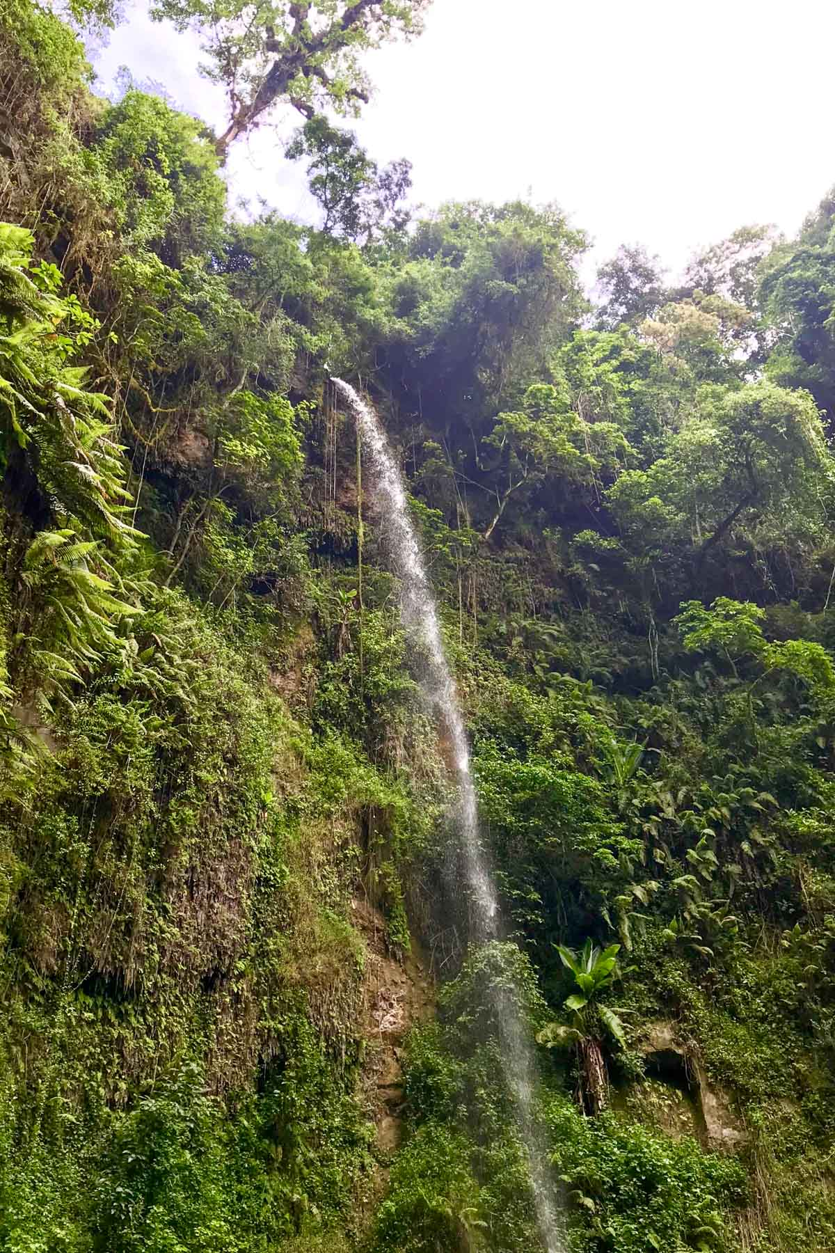Tanzanie-Mont-meru-cascade
