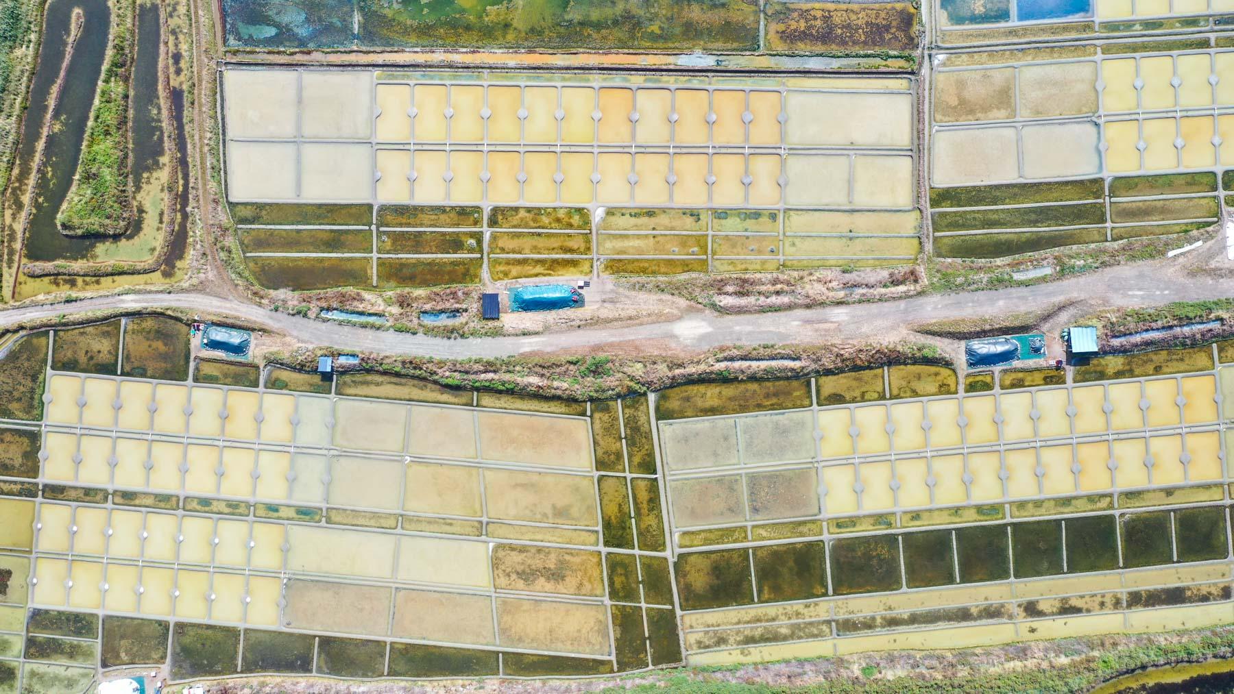 marais-salants-vue-de-drone